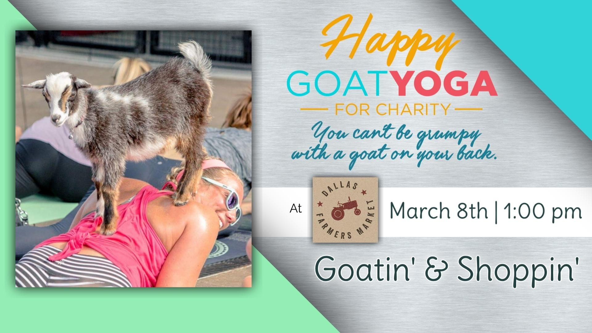 Happy Goat Yoga For Charity At The Dallas Farmers Market 8 Mar 2020