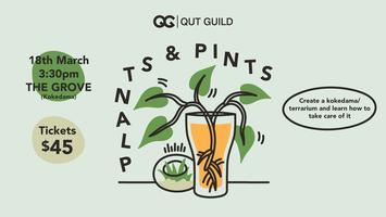 Event Series: Plants & Pints - Kokedama