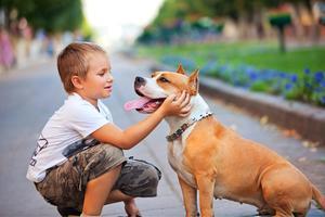 Lezing: kind en hond veilig op weg helpen