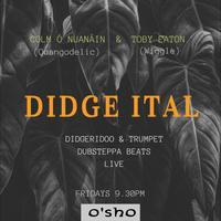 Didge Ital