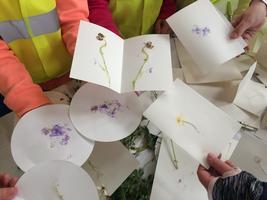 Plant Printing workshop