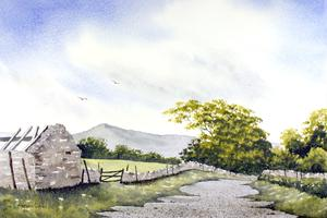 Watercolour Workshop- Green Landscapes with Steve...