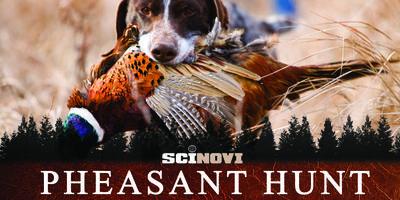 Event Postponed to a Latter Date: Pheasant Hunt Safari...