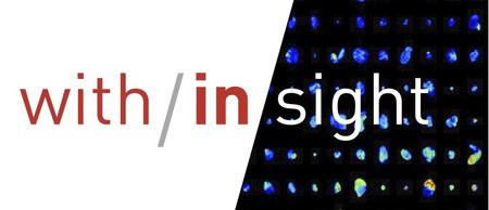 SCIENCE with/in/sight: 2020 Koch Institute Image Awards