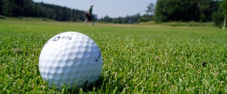 2020 Rochester Traveling Golf Leagues