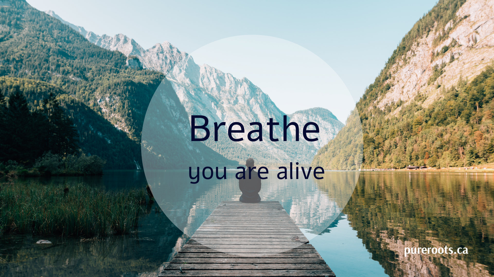 Breathwork Journey ~ An Active Meditation