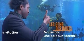 LES GENS DES HAUTS : NAUSICAA UNE BAIE SUR L'OCEAN