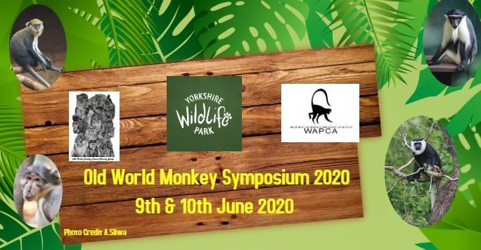 Old World Monkey Symposium 2020