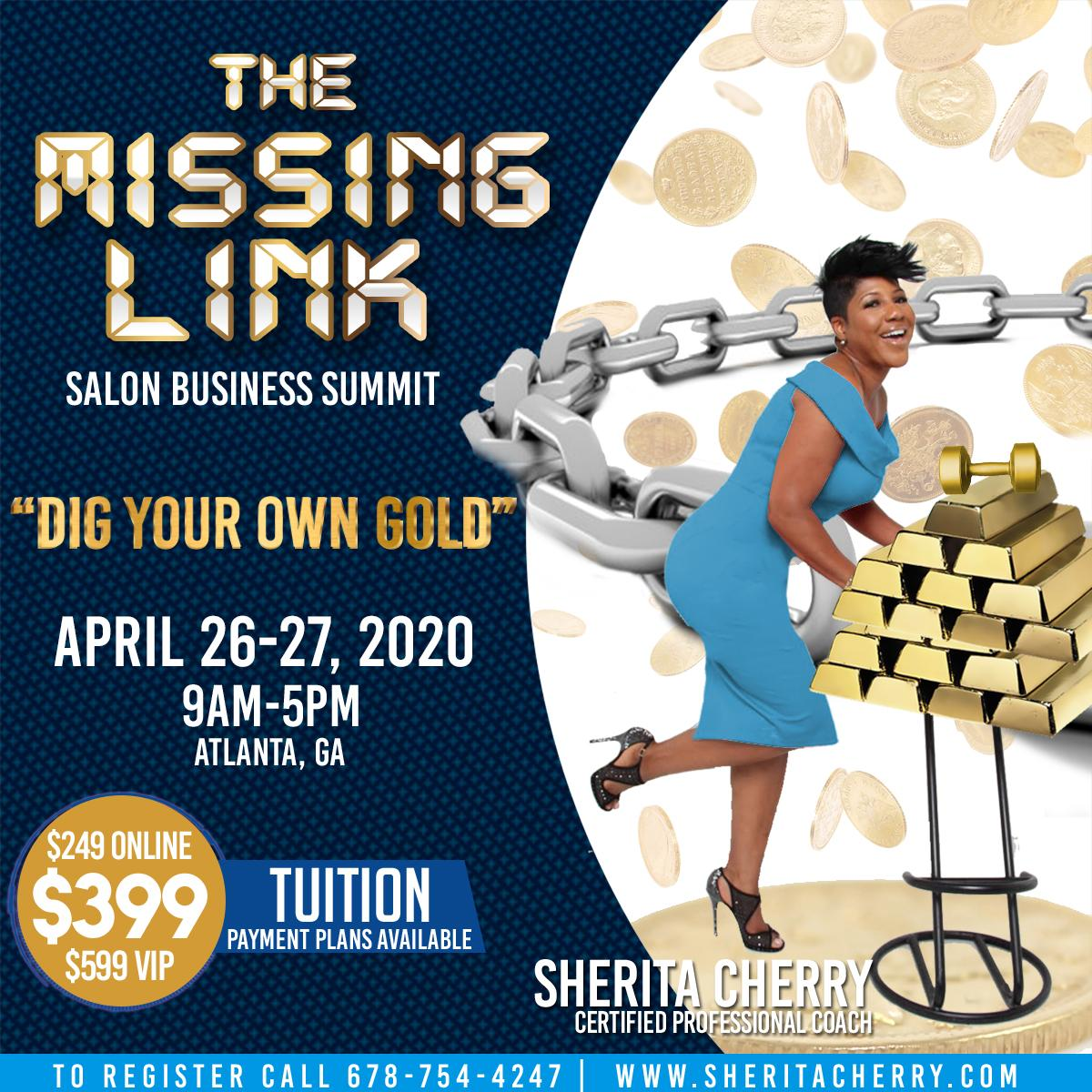 The MISSING LINK Business Summit w/Sherita Cherry