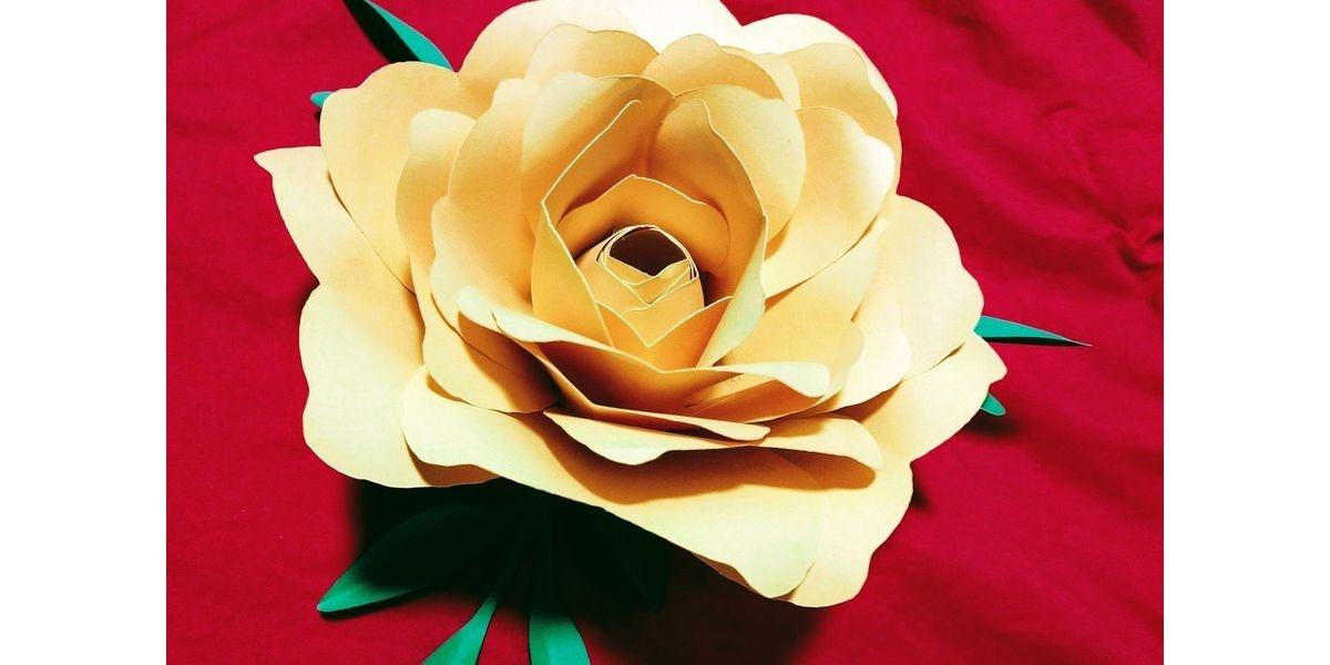 Paper Flower Creations w/ Natalie (06-08-2020 starts at 7:00 PM)