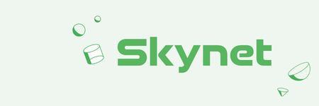 united internet skynet