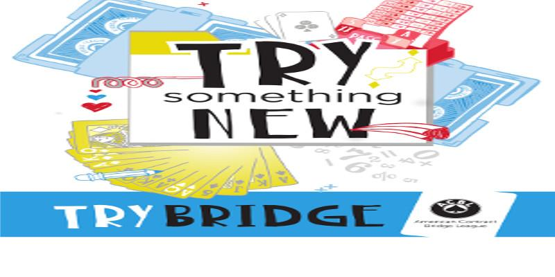 Learn How To Play Bridge - April 4, 2020