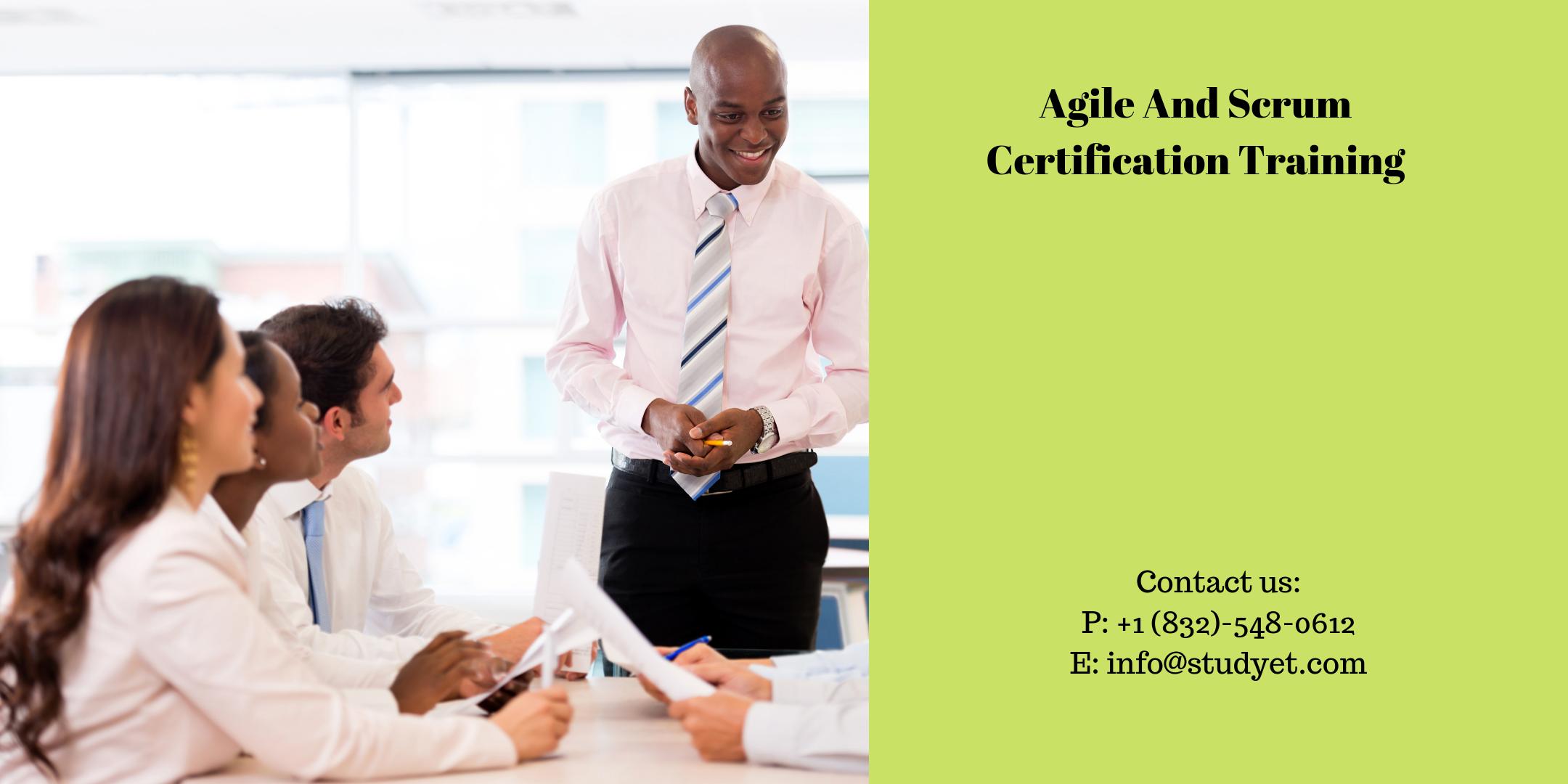 Agile & Scrum Certification Training in McAllen, TX