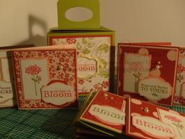 Bella's Bloom Mini Class Kit