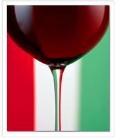 Italian Wine Tasting with Antonio Molesini- DOC and DOCG...