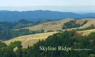 Ridge Trail Cruz