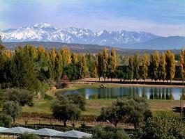 Argentina  -  Tango & Wine - Buenos Aires, Mendoza,...