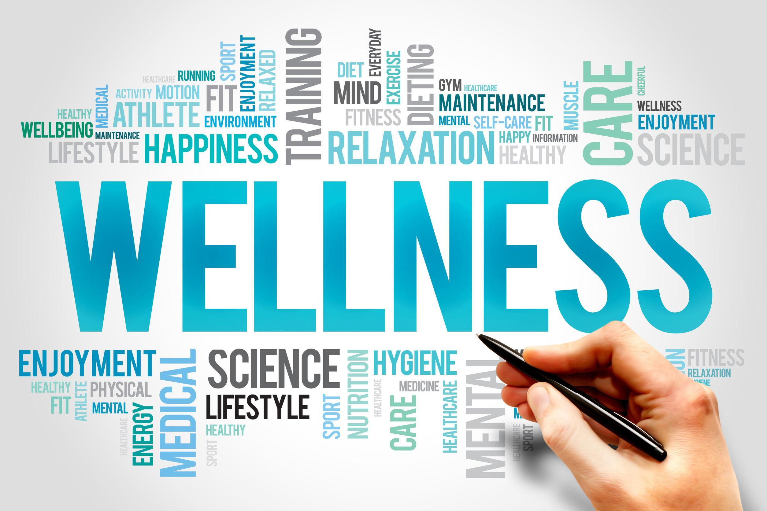 Wellbeing Workshops Training