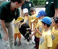 Volunteer Toronto's Fun Day at the Zoo