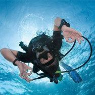 Chicago Area Free Scuba Diving Experience with Butch Ze...