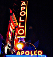 HCC Showtime at the Apollo at the Heinen Theatre Talent...