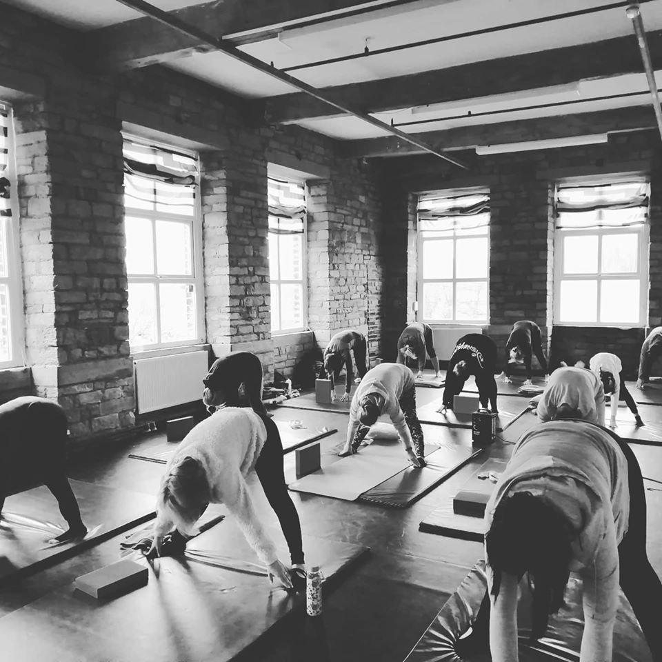 Turtle Yoga Saturdays (beginners)