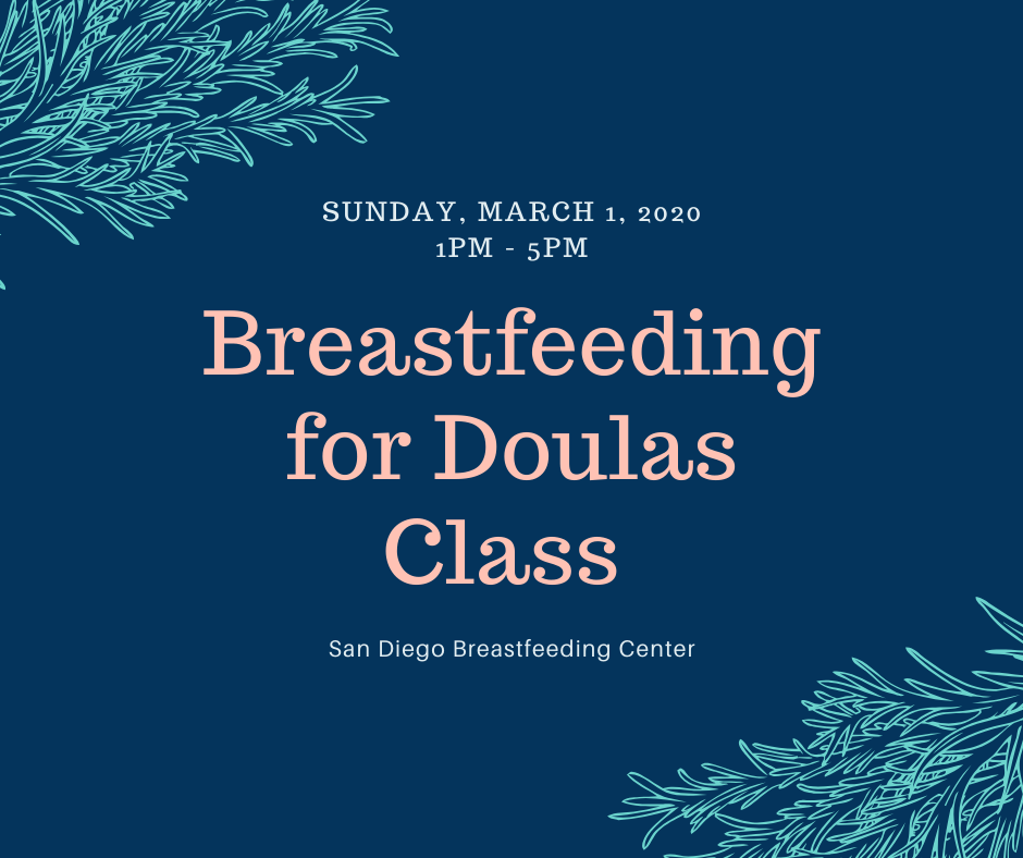 Breastfeeding 101 for Doulas Class