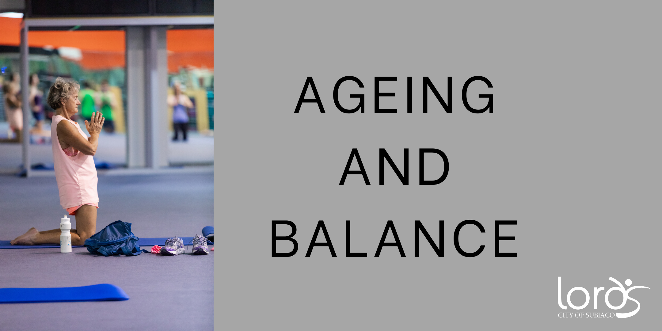 Ageing and Balance workshop