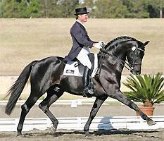 Heath Ryan Dressage & Jumping Clinic at Noble Horse...