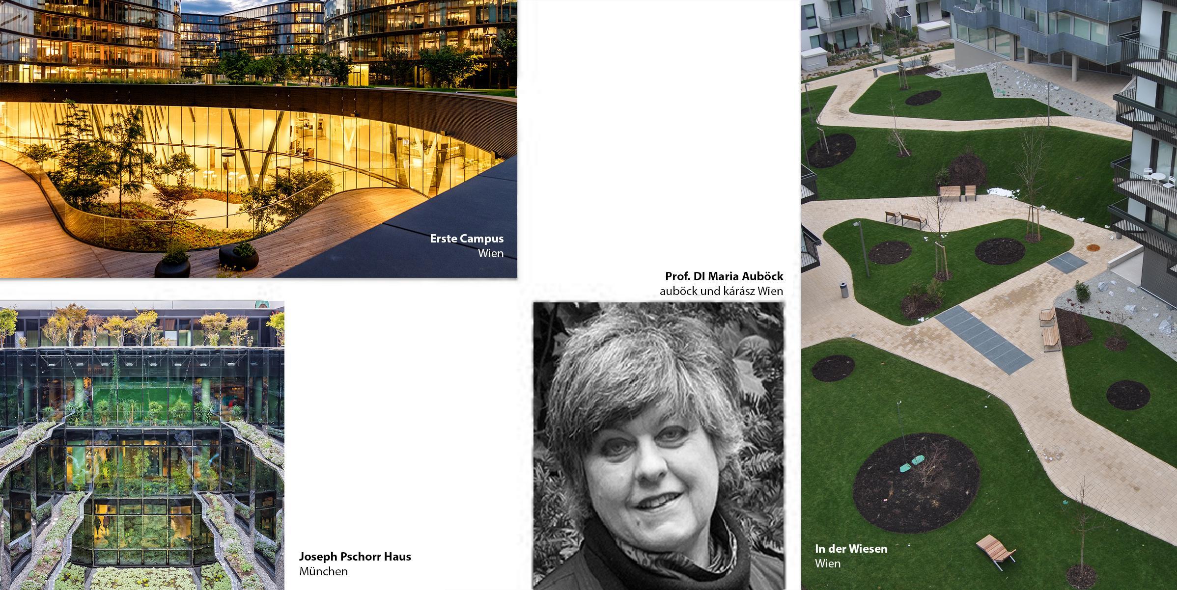 Cedral TerraceTalks | mit Maria Auböck von Auböck + Kárász Landscape Architects Wien