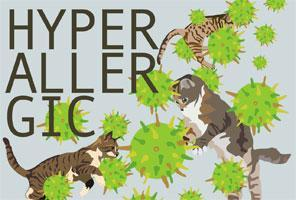 Hyperallergic Launch Party