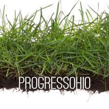 ProgressOhio logo
