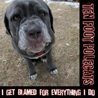 "Ten Foot Polecats CD - ""I Get Blamed For Everything I..."