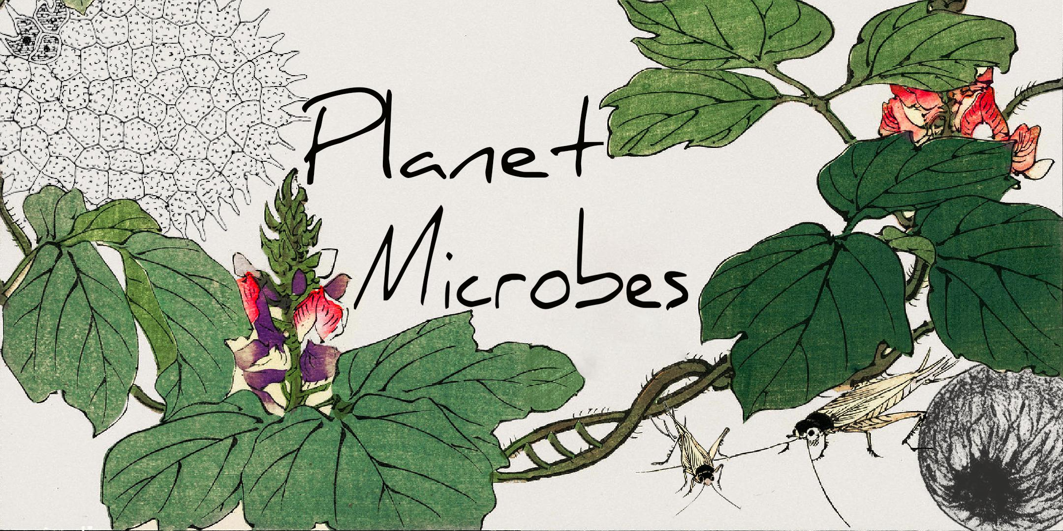 Planet Microbes: Environmental Microbiology Discussion Group