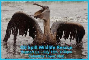 Oil Spill Wildlife Rescue