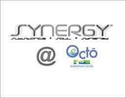 SYNERGY: A Charitable Networking Event to benefit the...