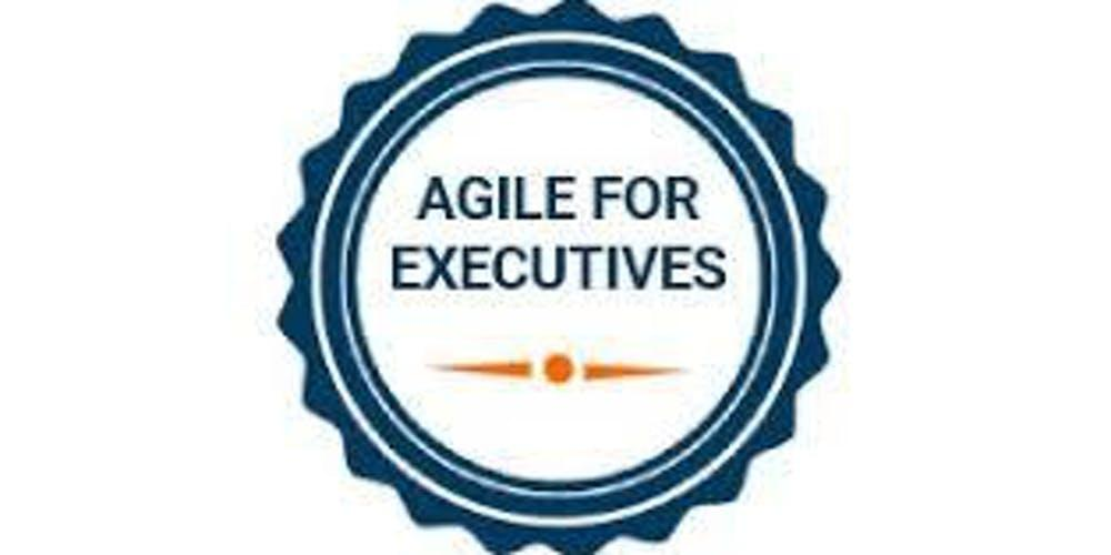 Agile For Executives 1 Day Virtual Live Training in Phoenix, AZ