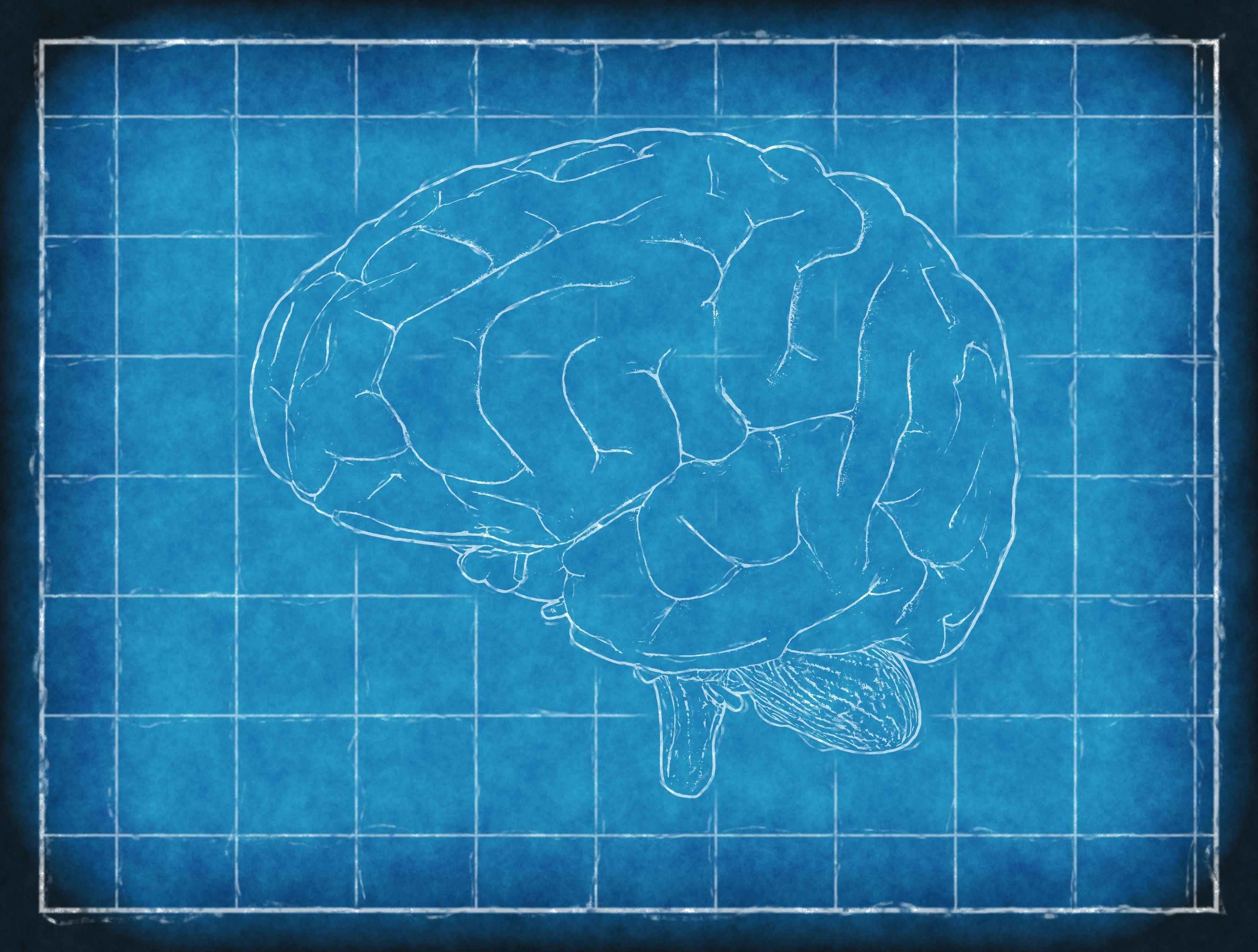 How To Improve Your Memory - Rochester