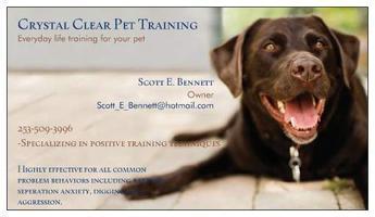 Crystal Clear Everyday Life Dog Training