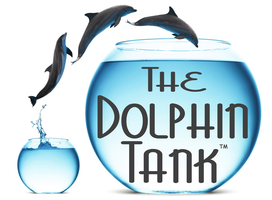 Springboard's Dolphin Tank™ at AOL Fishbowl Labs