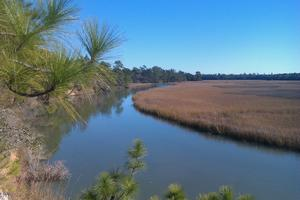 Guided Fun Run on the Awendaw Passage