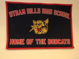 Byram Hills High School Class of 2000 Reunion