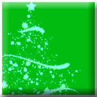 Tree Lighting and Holiday Concert