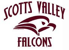 SVHS Falcon Club logo