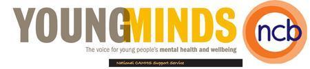 Children's Mental Health - Sustaining improvement,...