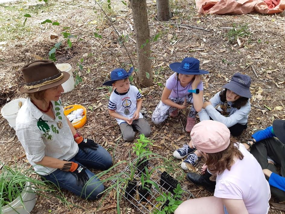 Outdoor Learning and the Curriculum: A Webinar for Educators