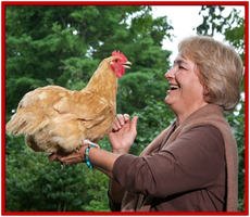 Chickens & You Two Day Intensive
